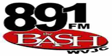 89.1 The Bash